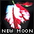 Twilight Series: New Moon: